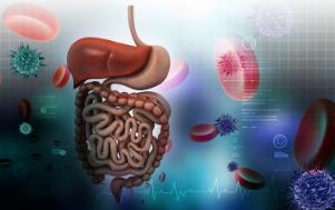 Problemas Gastrointestinais