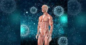 Read more about the article Prevenção de doenças